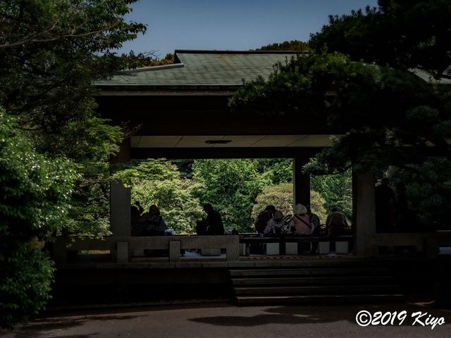 E5117766_CameraRAW_2048_signed.jpg