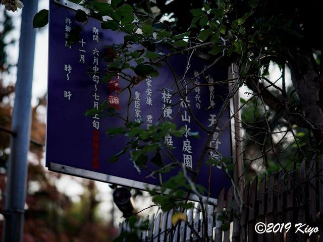 EC011748_CameraRAW_2048_signed.jpg